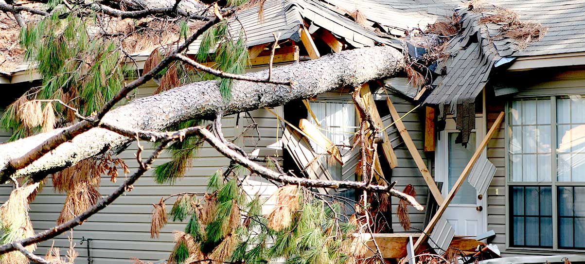 The Mitra Firm Homeowner Attorneys and Property Damage Attorneys in FL